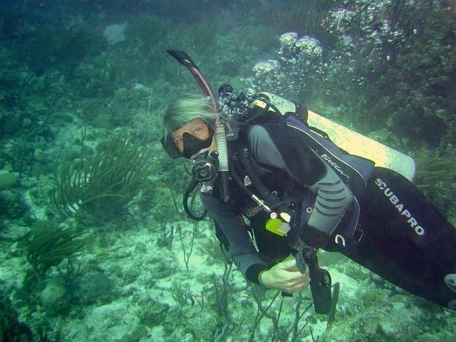 WB-dive-newbie-5